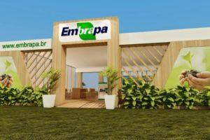 EMBRAPA 04